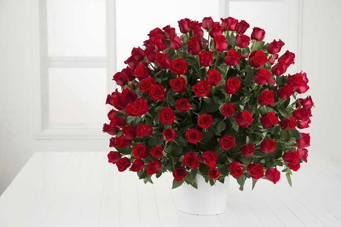 200_red_roses_300__00385.1411291518.670.450