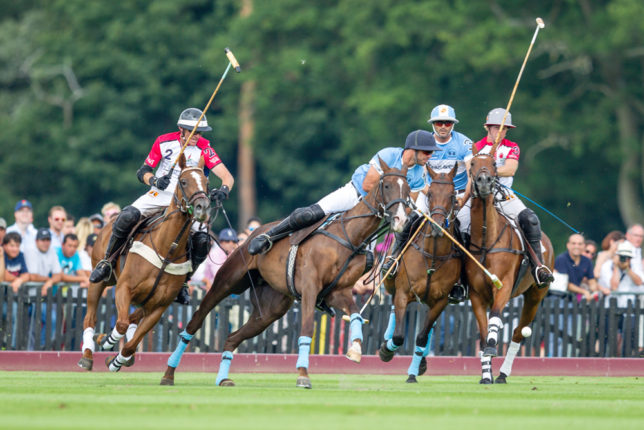 From the Dubai vs Halcyon Gallery Veuve Clicquot Gold Cup 2014 hosted this year at Cowdray Park Polo Club, Midhurst, West Sussex, United Kingdom, on July 26, 2014. Dominic James