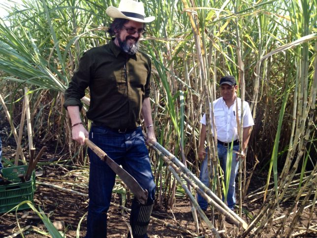 Dave Broom with sugar cane - the raw ingredient from which all rum is made.