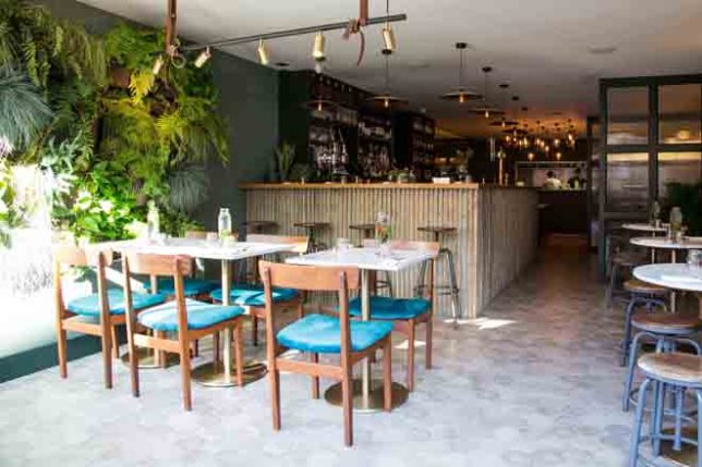 WOLF Restaurant Review SLOAN Magazine