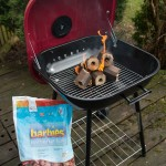 Barbies Barbecue Fuel