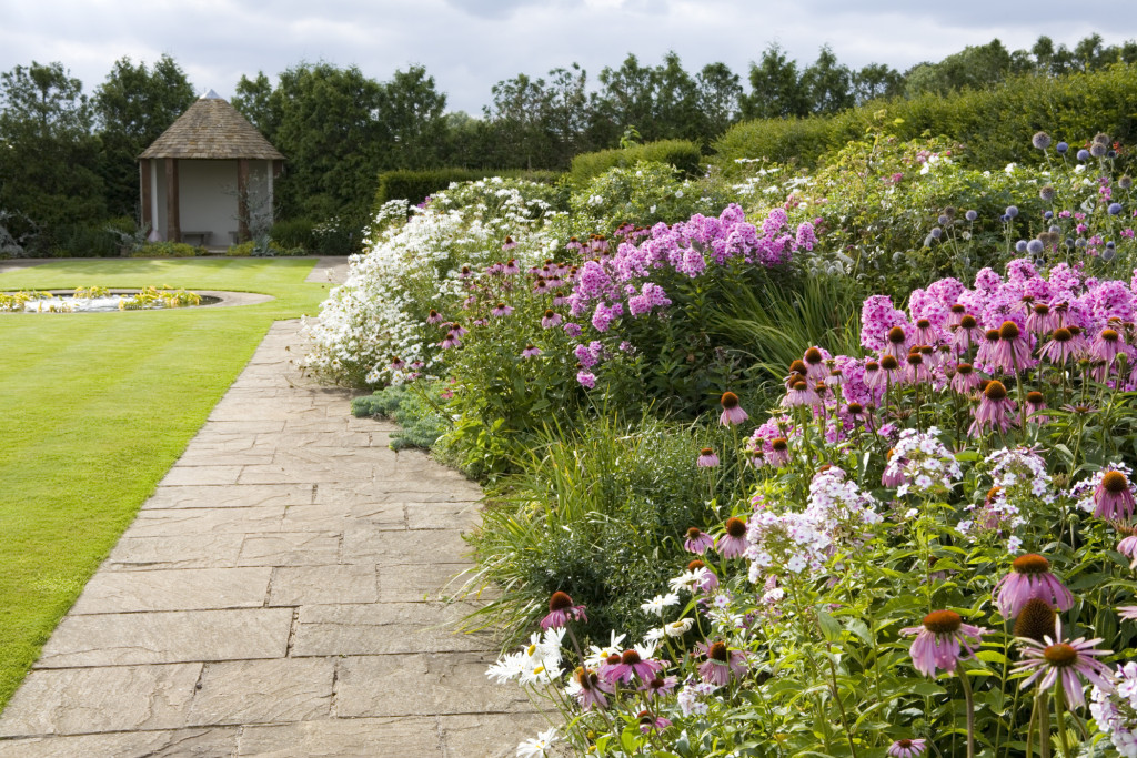 Phlox and echinacea in a summer border at Whatley Manor