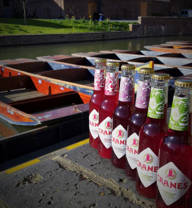 6 bottles in a row 1