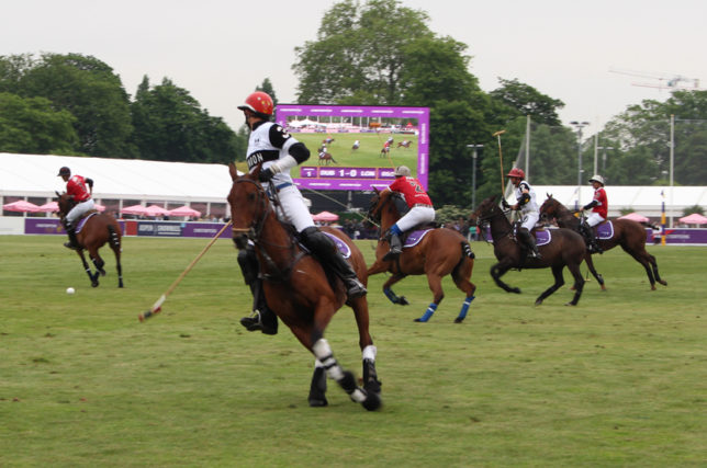 Polo in the Park 3