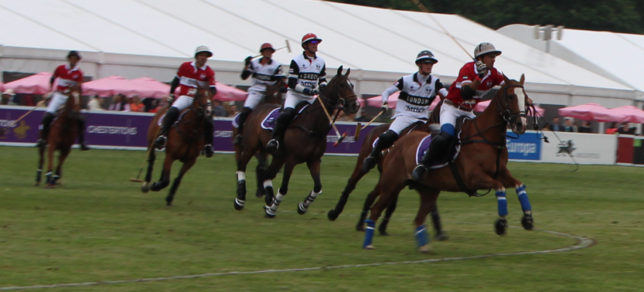 Polo in the Park 6