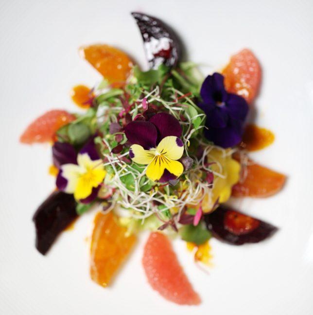 web Quilon signature salad