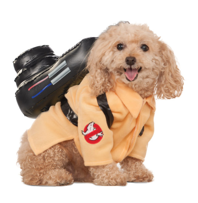 887865_ps_ghostbuster